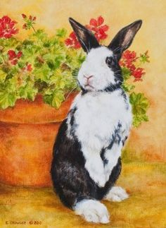 Google Image Result for http://www.myhouserabbit.com/blog/wp-content/uploads/2010/08/bunnyart.jpg