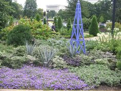 Washington DC Botanical Gardens LOVE the ground covers Garden Art, Purple Flowers, Ground Cover, Porch Garden, Botanical Gardens, Formal Gardens, Purple Garden, Garden Arch, Citrus Garden