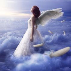 Welcome to heaven- Peace dwells on the wings of ANGELS.  ^i^  ^i^