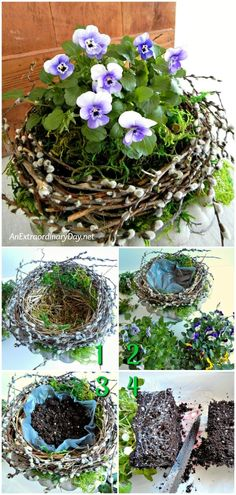 Natural Home Decor for Spring. See this Planting Tutorial for a Bird& Nest . Natural Home Decor for Spring. See this Planting Tutorial for a Bird& Nest Pansy Container for a floral vignette Container Flowers, Container Plants, Container Gardening, Flower Gardening, Gardening Shoes, Organic Gardening, Gardening Tips, Diy Garden, Indoor Garden