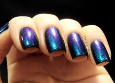 The Pleiades Collection - Electra