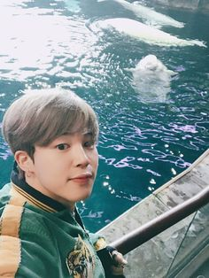 BTS Jin & Jimin share pictures from their aquarium adventure in USA — Koreaboo