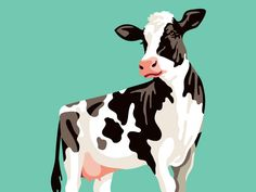 Turner's Cow Illustration by Emrich Office #Design Popular #Dribbble #shots