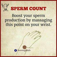Sperm count massage point