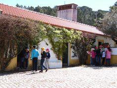 Dia 3 da Semana de Campo 2015.  #colegioalfragide #amadora #portugal #semanadecampo2015