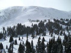 Tucker Mountain