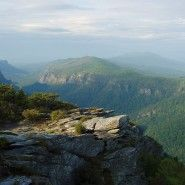 Linville Gorge Wilderness Area in Pisgah National Forest. poorly maintained trails makes backwoods orienteering advisable but this area offers some of the most untouched wilderness in the US.