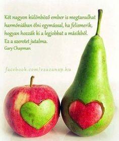 szeretet jutalma