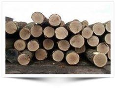 Rookhout - Welke soorten hout voor roken van vis?