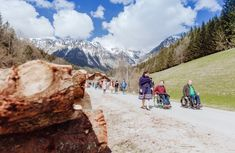 #erlebnisweg #klimawandeln #Klimawandel #erlebniswegklimawandeln #naturerlebnis #themenweg #naturerlebnis #Familie #Kinder #wandern #spaß #Erlebnis #naturpark #muerzeroberland #naturparkmuerzeroberland #visitmuerzeroberland #visitsteiermark #visithochsteiermark Mount Everest, Mountains, Nature, Travel, Hiking, Viajes, Traveling, Nature Illustration, Off Grid