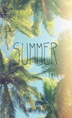 Verano                                                       …