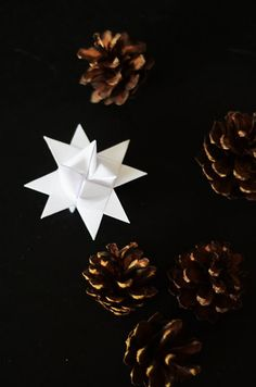 Danish Paper Christmas