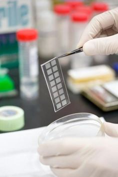 NIH-funded researchers at the University of California, San Diego, have developed a new molecular technique that can accurately and uniformly copy the #DNA inside a single #cell.