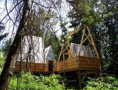 Swamp Hut, Newton, MA by Moskow Linn Architects ( http://www.moskowlinn.com/ ).  Image courtesy of cabinporn.com