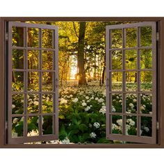 Window Frame Mural Wild garlic Forest Huge size Peel and