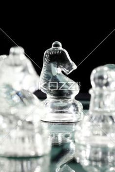 chess knight against dark background. - Close-up image of chess knight standing on chess board.