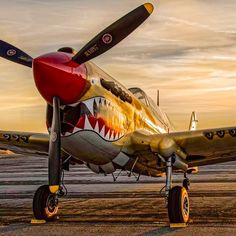Vintage Aircraft – The Major Attractions Of Air Festivals - Popular Vintage Airplane Fighter, Airplane Art, Fighter Aircraft, Fighter Jets, Image Avion, Ww2 Planes, Vintage Airplanes, Nose Art, Aviation Art