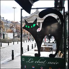 Panoramio - Photo of Le chat noir..