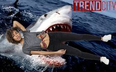 A pálmafás promenádjáról híres Opatija strandján, a parttól nagyjából 100 méterre úszó 19 éves egyetemistára támadt rá egy 5 méter körülire becsült nagy fehér cápa. A súlyos, nem provokált támadásban az áldozat a jobb karját és lábát is elvesztette. Mire a mentőcsónak elérte, a kivérzés okozta sokkban már meghalt, és csak a holttestét tudták beemelni a csónakba. American Apparel, Farmer, Whale, Polo, Urban, Sports, Animals, Hs Sports, Whales