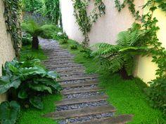 jardin montreuil mousse et fougere Jardin Montreuil Amaury Gallon