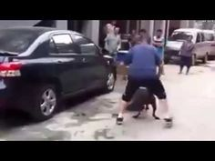 Pitbull Attacks other Dog in street