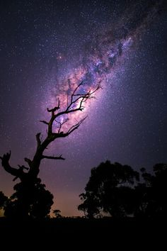 Rising Milky Way by Tim Wood on astrophotography landscape milky way night night photography nightscape stars céu universo galáxia nebulosa via láctea All Nature, Science And Nature, Amazing Nature, Nature Gif, Nature Images, Beautiful Images Of Nature, Night Photography, Landscape Photography, Nature Photography
