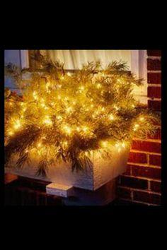 Christmas Lights Window Box