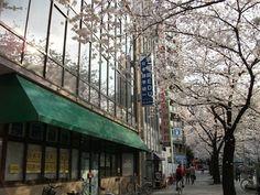 Học bổng du học Nhật tại Nhật ngữ Waseda Edu