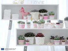 Echeveria is Woonplant van de Maand Augustus - mooiwatplantendoen. Cacti And Succulents, Potted Plants, Indoor Plants, Echeveria, Monat August, Houseplants, Flower Pots, Floating Shelves, Kids Room