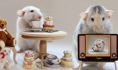 The real-life Sylvanian Families! Photographers uses pet rats to create everyday human scenes