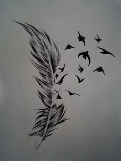 Feather and birds by Frontside92.deviantart.com on @deviantART