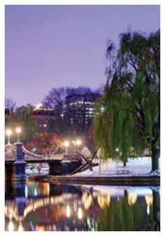 Photo by vibekedy Photo Editor, Boston, Winter, Blog, Design, Winter Time, Blogging, Winter Fashion