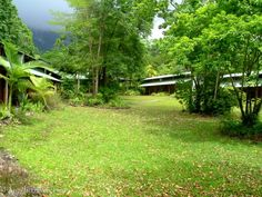 Australia a country of endless possibilities - Cape tribulation eco lodges