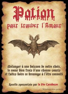 affiche chauve souris Harry Potter Severus, Deco Harry Potter, Harry Potter Tops, Harry Potter Potions, Theme Harry Potter, Harry Potter Birthday, Harry Potter Hogwarts, Harry Potter World, Halloween Apothecary Labels