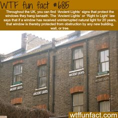The Right to Light law- WTF fun fact | Follow @gwylio0148 or visit http://gwyl.io/ for more diy/kids/pets videos