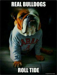 Real Bulldogs