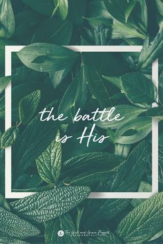 "Look up, cling to your faith, have hope in His presence. The battle is His. ""The LORD will fight for you; you need only to be still."" Exodus //so comforting to know Bible Verses Quotes, Bible Scriptures, Faith Quotes, Hope Scripture, Be Still Bible Verse, Bible Quotes For Women, Faith Verses, Encouraging Verses, Quote Life"