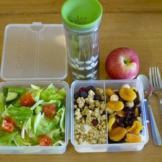 Healthy to-go lunch: garden salad, greek yogurt with berries and granola, dried fruit and nuts, apple and green tea.