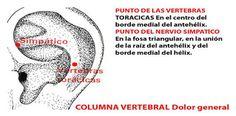 ASOCIACION INTERNACIONAL ACUPUNTURA TRADICIONAL VADEMACUM ORIENTATIVO PROF. DR. FERNANDO LURUEÑA: C