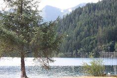 Log Cabin Resort, Lake Crescent, Olympia National Park, Washington