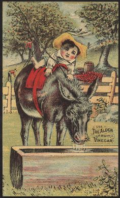 File name: 10_03_003235a Binder label: Stock Cards Title: Use the Alden Fruit Vinegar [front] Date issued: 1870-1900 (approximate) Physical description: 1 print : chromolithograph ; 13 x 8 cm. Genre: Advertising cards Subject: Boys; Donkeys; Fruit; Condiments; Food; Dry goods Notes: Title from item. Collection: 19th Century American Trade Cards Location: Boston Public Library, Print Department Rights: No known restrictions.