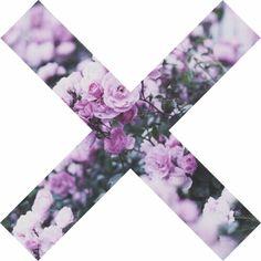 Purple Wallpaper, Tumblr Wallpaper, Wallpaper Backgrounds, Iphone Wallpaper, Wallpapers, Theme Dividers Instagram, Instagram Divider, Instagram Spacers, Tumblr Transparents