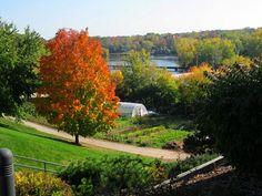 Fox River at Appleton, Wisconsin