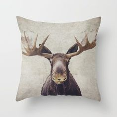 A tremendous throw pillow.