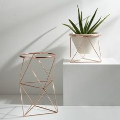 eric trine plant stand