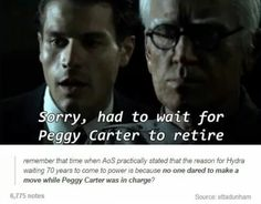 I can't believe Agent Carter is over. and to think it was becoming my favorite show. Hydra waited 70 years because Peggy Carter was in charge Agent Carter, Peggy Carter, Marvel Jokes, Marvel Funny, Marvel Dc Comics, Avengers Memes, Marvel And Dc Superheroes, Superhero Memes, Geek Culture