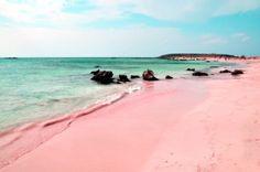 Η Ροζ παραλία στην Ελαφόνησο!