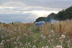 Riversidelakes camping in wimborne dorset. beautiful natural dorset countryside.