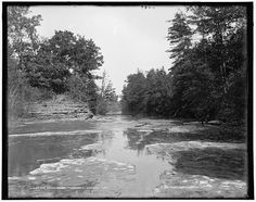 Canaseraga River Creel Trees Poags Hole Water Bodies Dansville New York NY 1890