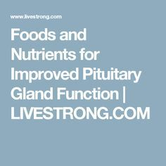 Foods and Nutrients for Improved Pituitary Gland Function   LIVESTRONG.COM